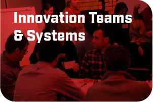 Innovation Teams and Systems